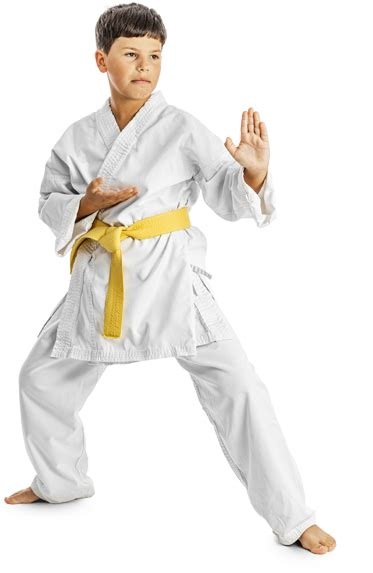 all martial arts in the world