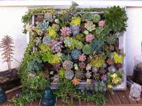 how to plant beautiful diy framed vertical succulent garden living art step by step tutorial