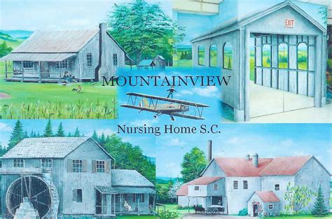 mountain view nursing home spartanburg south carolina