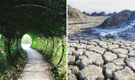Garden Snake Island Terrifying Places You Never Want To Visit Including Snake