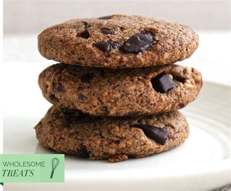 wholesome delicious treats that you wholesome treats sugar free hazelnut choc chip cookies