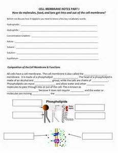 cell membrane coloring worksheet cell membrane coloring sheet coloring pages