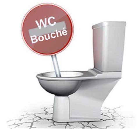toilettes bouch es solution les 25 meilleures id 233 es de la cat 233 gorie deboucher un wc