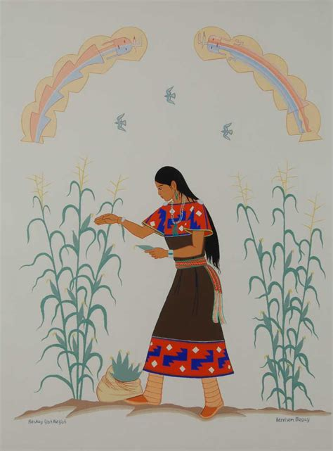 young dine navajo girl gathering corn  harrison begay