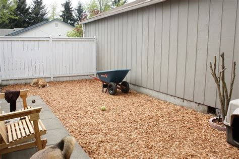 runner for dog in backyard better than a dog run yard ideas for your four legged family member r up a