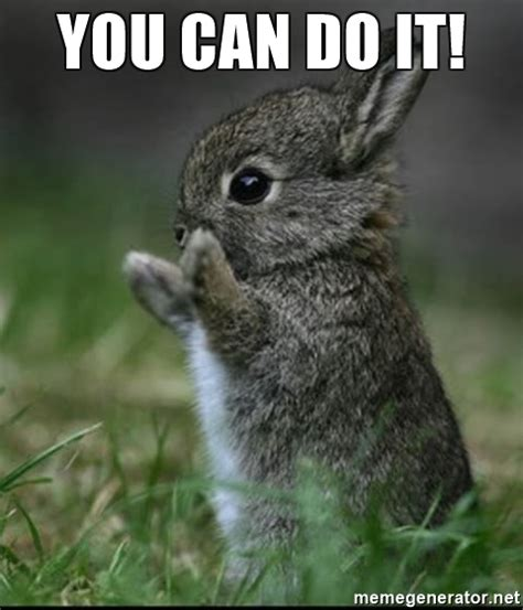 You Can Do It Memes - you can do it cute bunny meme generator