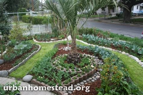 how to transform your backyard front yard edible garden ideas photograph org how to