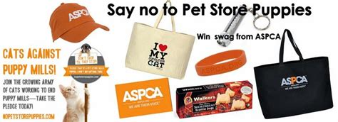 Win A Doggie And Baby Bag Of Swag by Best 25 Pet Store Ideas On Pet Shop Shop