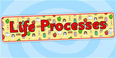 Biography Banner Ks2   ks2 science life processes and living things page 1