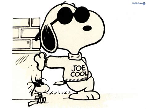 what of is snoopy snoopy is joe cool peanuts wallpaper 254005 fanpop
