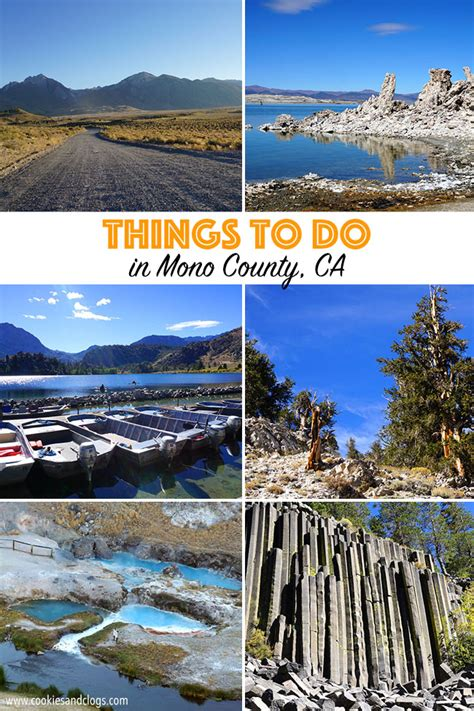 can dogs get mono things to do in mono county in california with