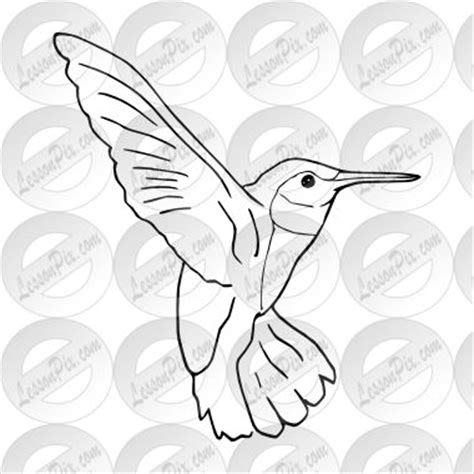 Hummingbird Outline by Hummingbird Outline Crafts Outlines