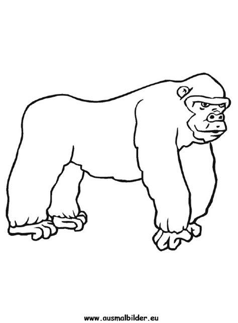 gorilla outline coloring page ausmalbilder gorilla gorillas malvorlagen