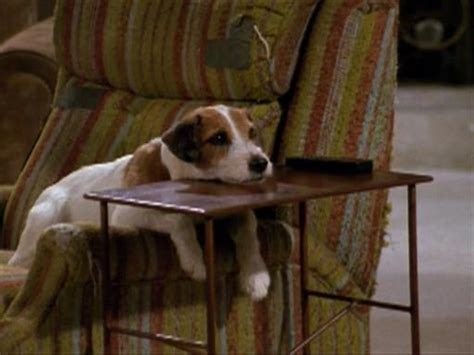 dogs name on frasier amazing actors