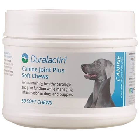 duralactin for dogs order duralactin canine joint plus soft chews for dogs and puppies