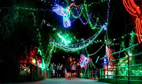 zoo lights in az zoo lights now open at park in tucson local news