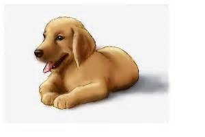 how to draw a golden retriever easy how to draw a golden retriever puppy drawingnow