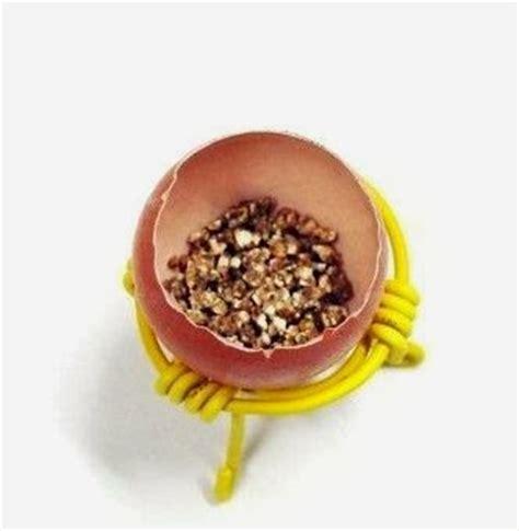 cara membuat kerajinan kulit telur bekas yang berguna kreasi pot bunga dari kulit telur