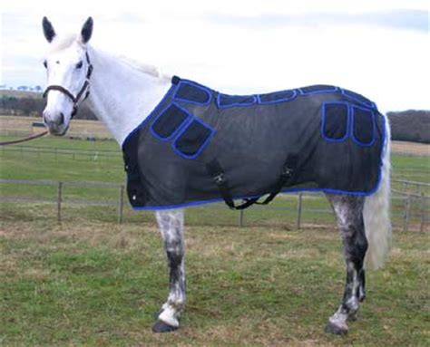 magnetic rug for horses magnetic therapy for horses magnetic rugs magnetic boots magnetic therapy rugs