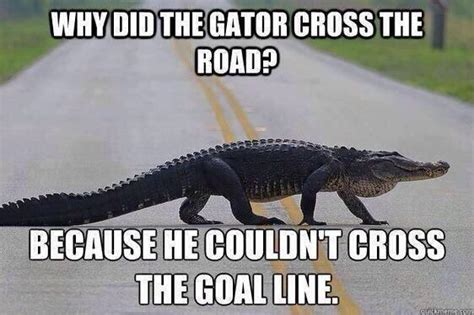 Florida Gator Memes - georgia bulldog nation s best anti florida gator memes of