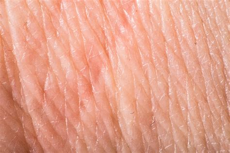 human skin texture up macro of brown person clean skin stock image image of texture of human skin abstract photos on creative market