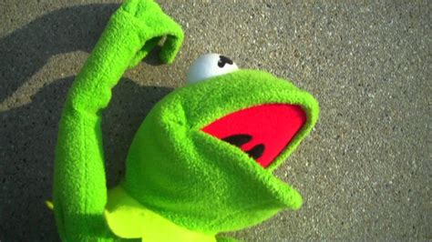 kermit  frog wallpaper  images