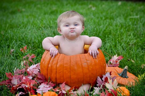 baby pumpkin four leaf photography louisville wedding photographer