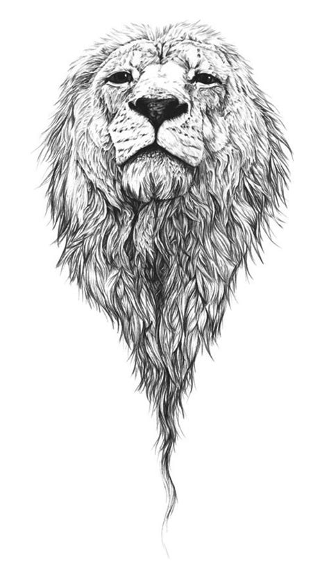 lion pattern tumblr 428 best lions images on pinterest lion art therapy and