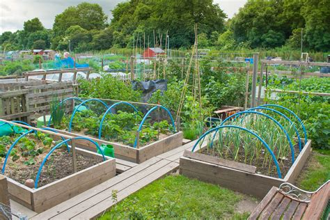 Home And Gardening Ideas Home Vegetable Garden Ideas Stylish Gardening Tips The Gardens Fancy And Design
