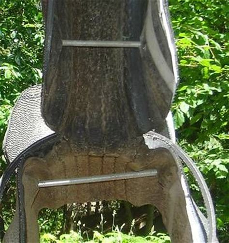 horse shaped tire swing diy pony tire swing home design garden architecture