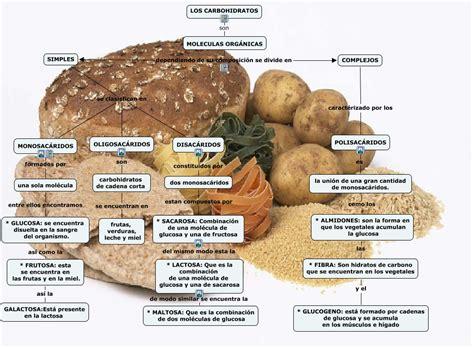 alimentos hidratos de carbono lista carbohidratos