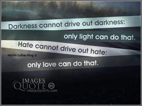 drive out hate cannot drive out hate hate quote images quote