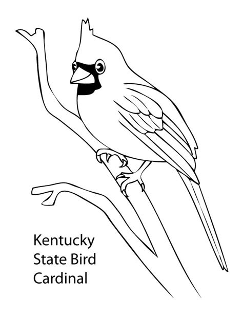 state bird coloring pages az coloring pages