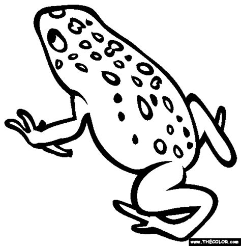 coloring page poison dart frog free online coloring pages thecolor