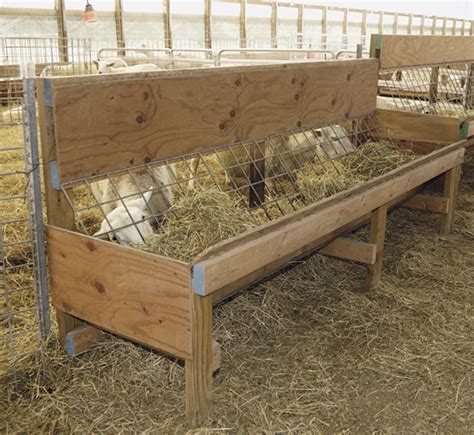 How To Make A Hay Rack by Sheep Hay Feeders Image Search Results