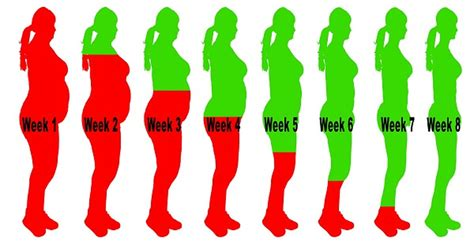 weight loss 8 weeks 7 burning smoothies to lose weight in 8 weeks