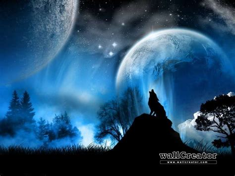 Lone Wolf lone wolf wallpapers wallpaper cave