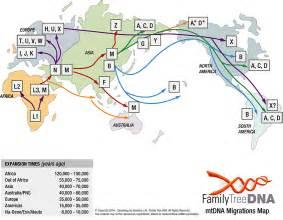 mtdna haplogroup projects worldfamilies net