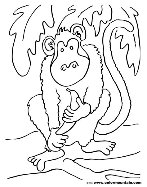 howler monkey coloring coloring pages