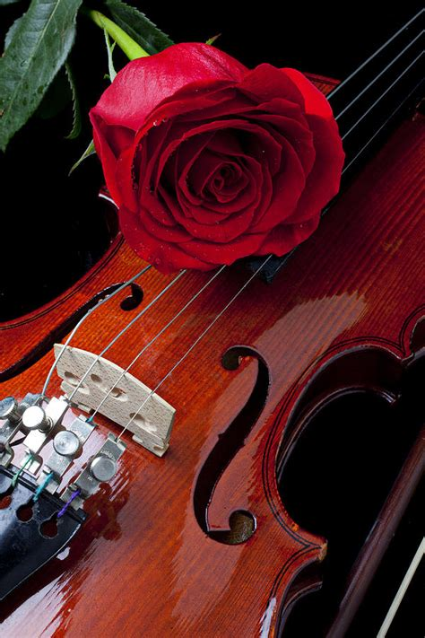 Black And Red Duvet Cover Red Rose With Violin Photograph By Garry