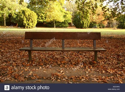 autumn park bench park bench autumn park bench in the autumn stock photo