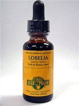 Cigarette Detox by Quit All Of You Smokers Lobelia Extract Has Been
