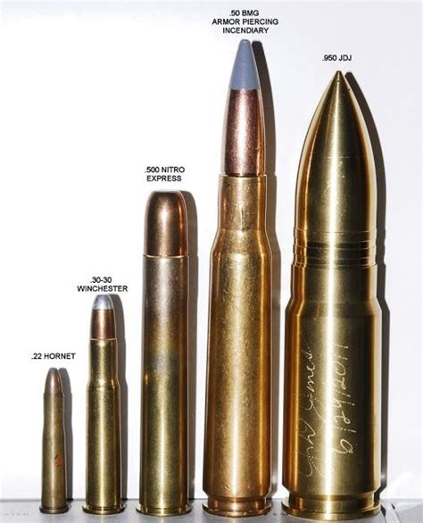 ammo and gun collector 950 jdj worlds largest quot sporting