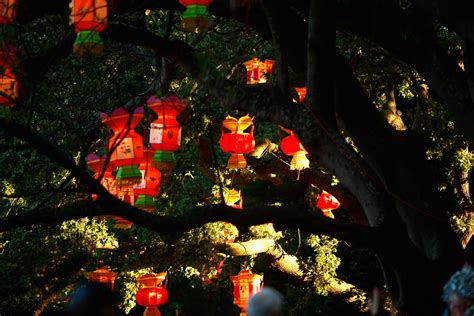 lantern light festival canterbury park lantern festival history and origins of the 2 200 year