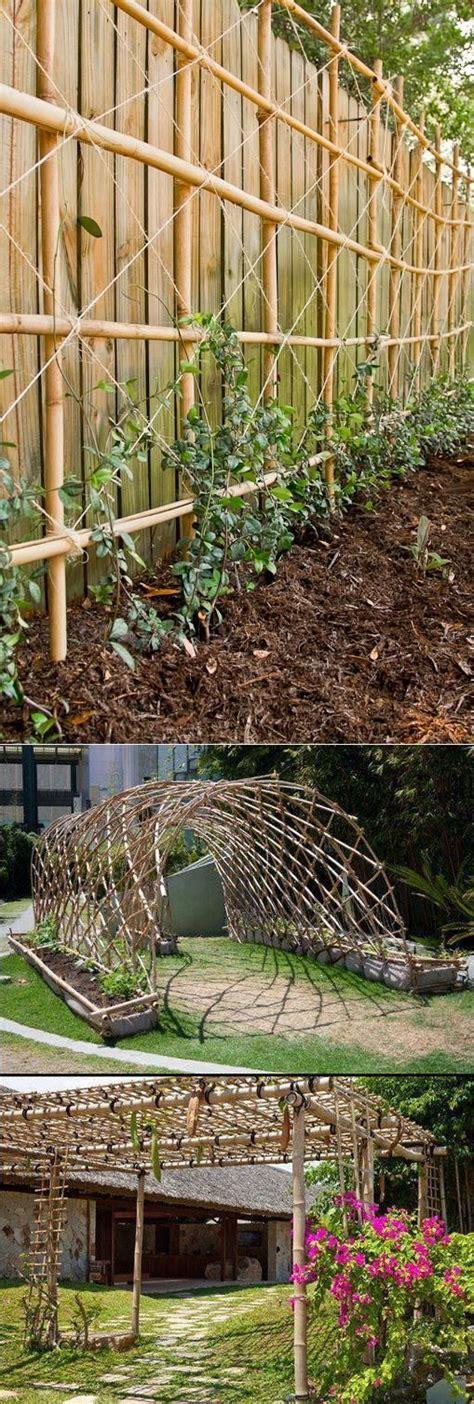 Garden Trellises For Climbing Plants Edible Gardens Climbing Flowers Flower And