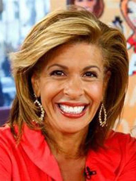 hoda kotb favourite shoo 1000 images about as seen on pinterest