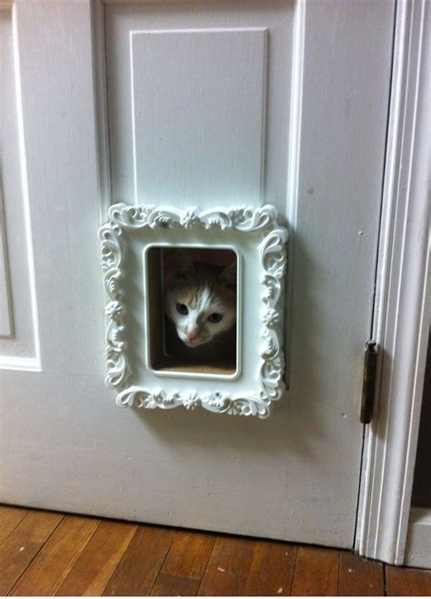 Cat Door Exterior Replaced Our Cat Door With An Ikea Picture Frame Only 5 The Opening Is A Tight Fit But As