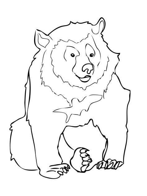 free printable coloring pages black bear free printable bear coloring pages for kids