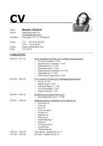 Curriculum Vitae Headings by Sample Resume Headings Bestsellerbookdb