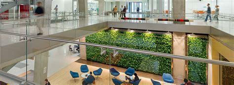 living green wall benefits ambius